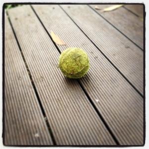 130909 Ball