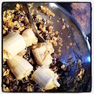 Banana & Blueberry Bickies (4)
